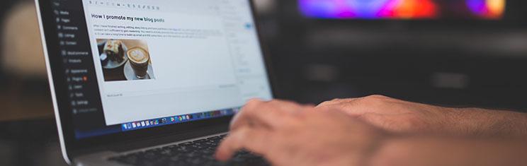 SEO blog writing service